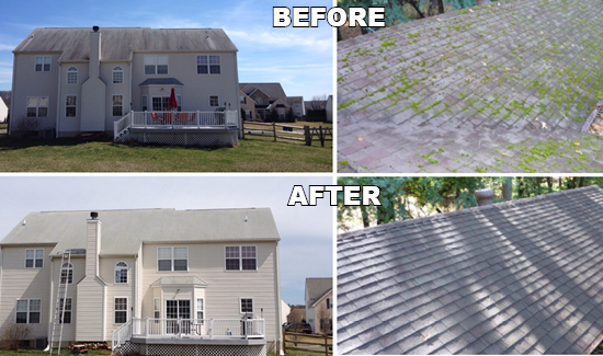 Soft Wash Roof Cleaning Specialists North Delaware - Sparkling Image