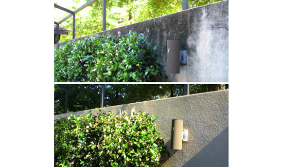 wall and fence power washing