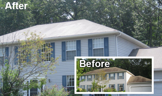 soft wash roof cleaning services