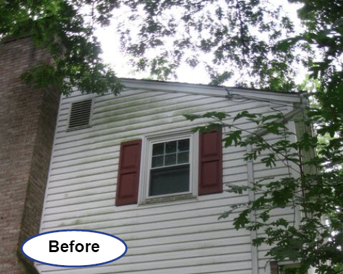 Power Washing soft wash siding cleaning Delaware before