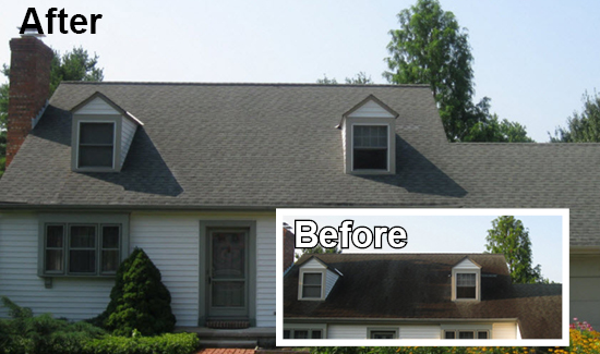 soft wash roof cleaning services delaware